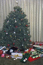 A photographic image our Christmas tree when we lived in Nebraska.