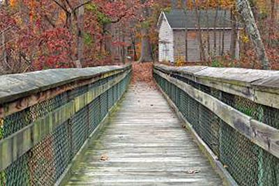 A photographic image of a rustic bridge.