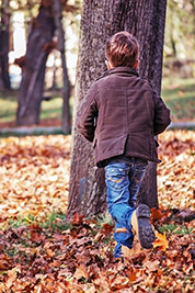 A photographic image of a toddler running towards a tree.